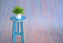Coloque plantas na sua casa, elas ajudam a deixar o astral positivo