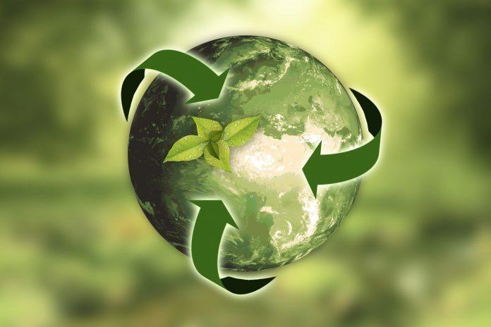 No Dia Mundial do Meio Ambiente, saiba o que você pode reciclar