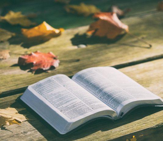Há inúmeras maneiras de ler