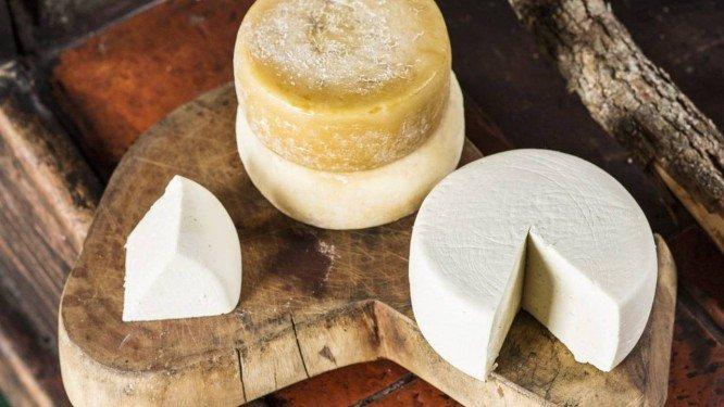 O queijo do Serro, iguaria mineira