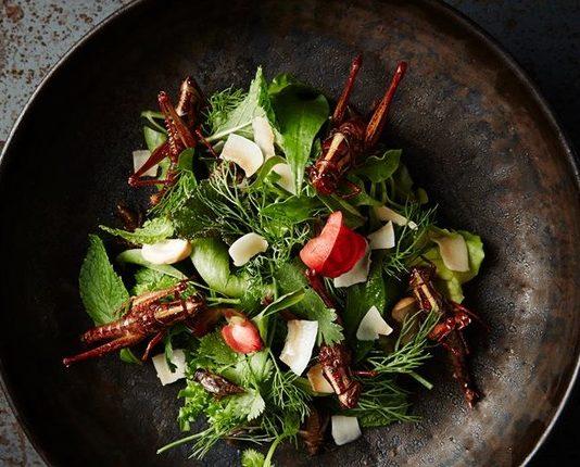 Carne vegana é uma das tendências da gastronomia de 2019