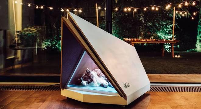 Ford decidiu usar tecnologia automotiva para proteger cachorros do barulho dos fotos de artifício