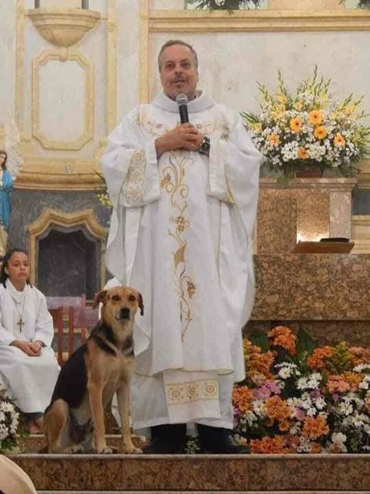 Um dos cães que o padre João encontrou na rua acompanha uma de suas celebrações. Foto - Facebook Padre João