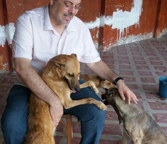 """Padre João explica o motivo pelo qual deixa os cães circularem livremente na sua igreja: """"Se eu que sou o maior pecador posso entrar, imagine esses anjinhos de quatro patas"""". Fotos - Faciebook Padre João"""
