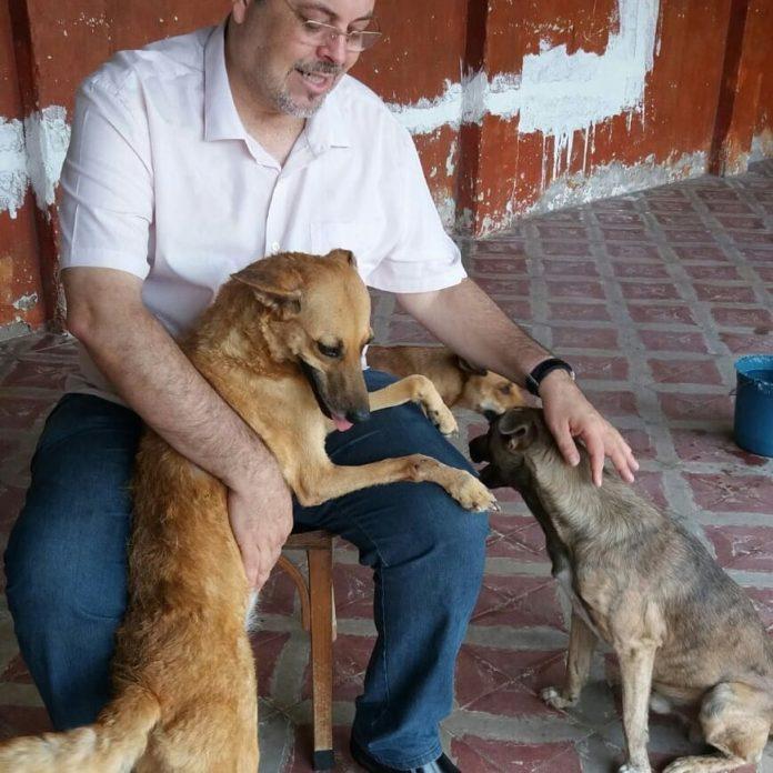 Padre João explica o motivo pelo qual deixa os cães circularem livremente na sua igreja: