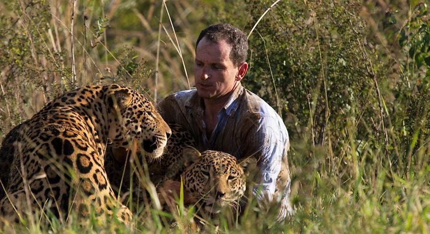 O biólogo Leandro com duas onças-pintadas no instituto que ele criou para ajudar a preservar a espécie. Foto - Instituto Onça-Pintada