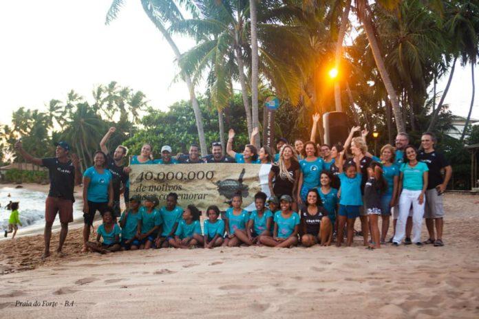 Projeto Tamar: 40 anos de vida e 40 milhões de tartarugas protegidas no litoral brasileiro. Fotos - Projeto Tamar/Facebook